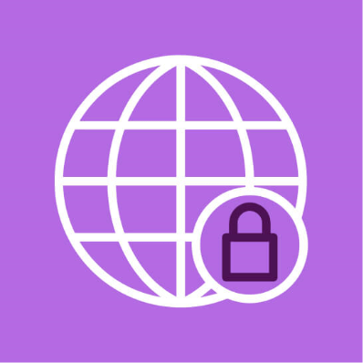 Globe lock icon